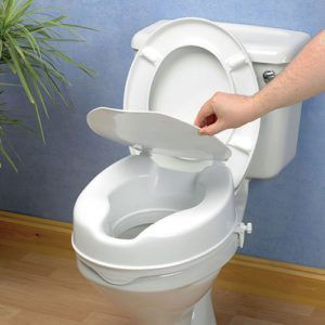Great Toilet Seat Discussion