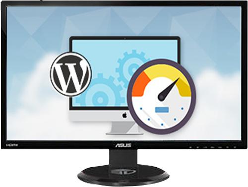 Instant WordPress Help provides you WordPress speed optimiza