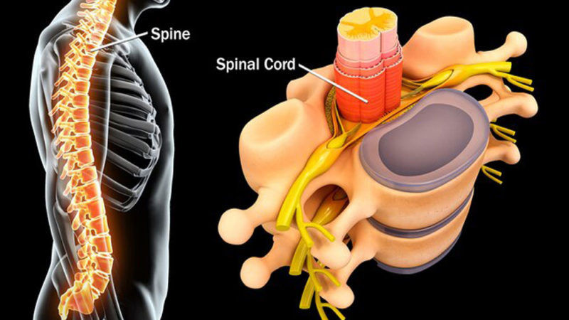 Advancements in Treatment of Acute Spinal Conditions