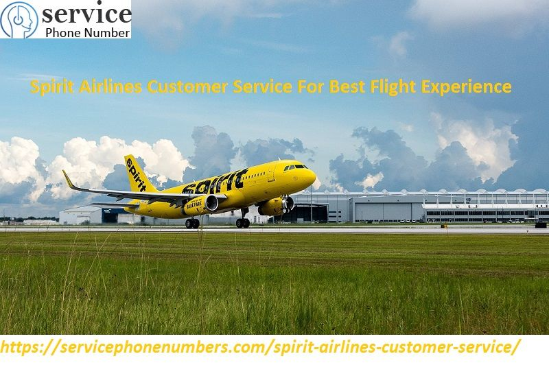 Spirit Airlines Customer Service For Best Flight Experience