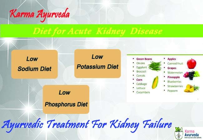 Ayurvedic Treatment for Chronic Kidney Disease Stage 3