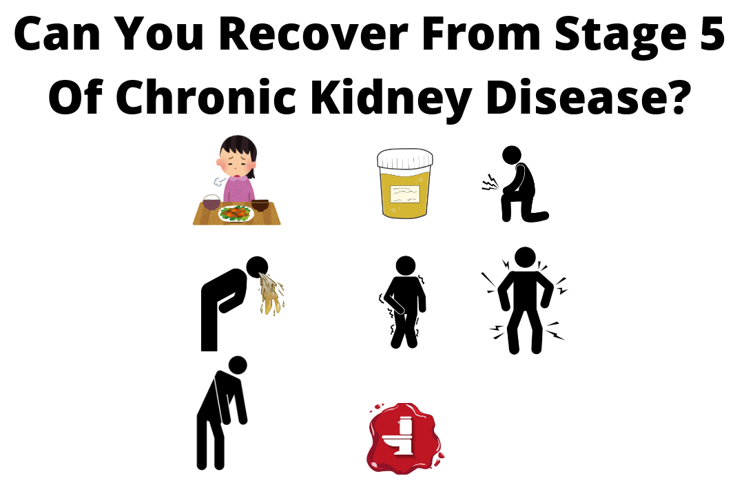 Can you Recover from Stage 5 of Chronic Kidney Disease?