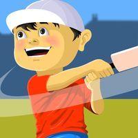 Street Cricket - Free Online Game at SpideyGames