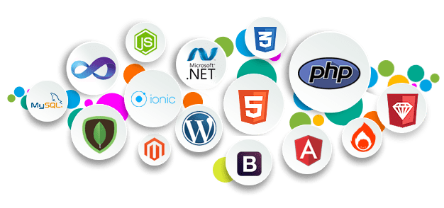 Website Development Company in India - Web Development