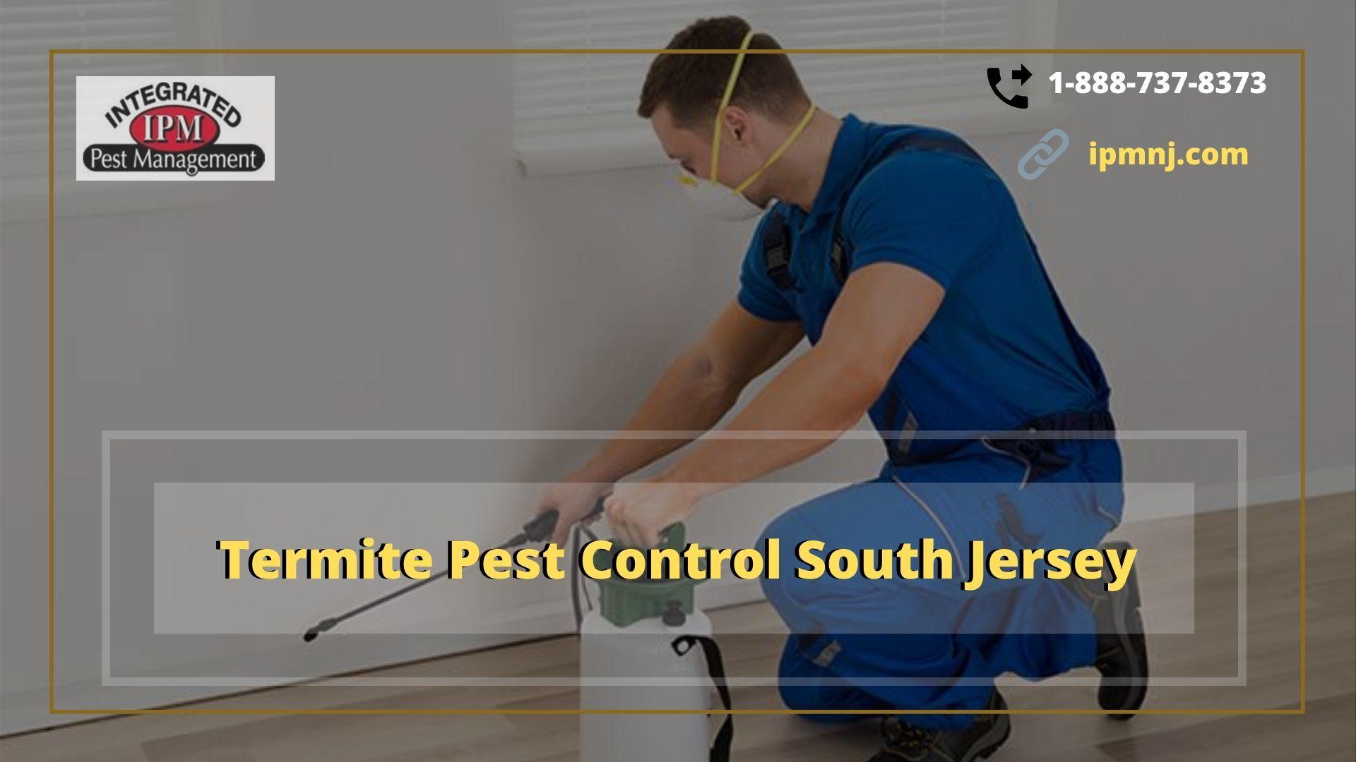 Termite Pest Control South Jersey - Gifyu