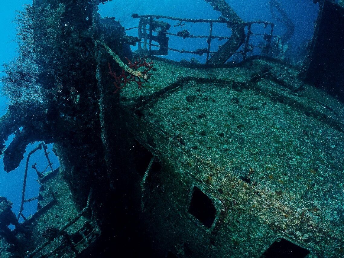 Red Sea Diving Safari Diving