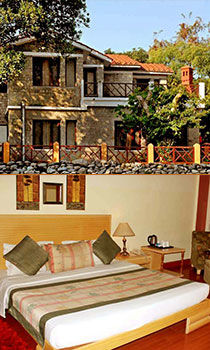 Discount on New Year Packages in Jim Corbett , New Year Celebrations In Jim Corbett