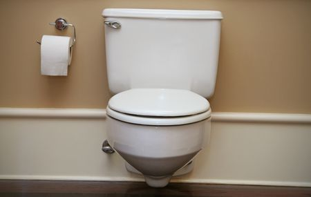 Basic Idea About Toilet Flapper