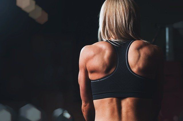 What can the back extension machine do for you? | Meguini Wellness
