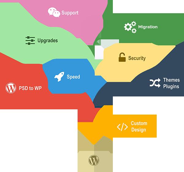WordPress Development Services | Custom WordPress Development