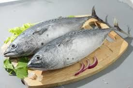 Tuna Market Growth