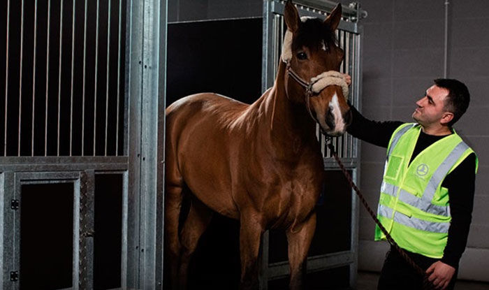 Turkish Cargo builds trust in 'Live Animal' transportation operations