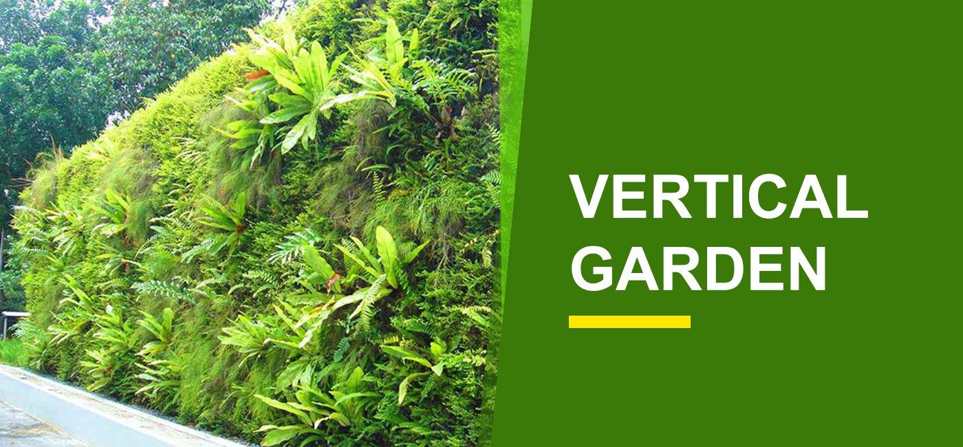 Vertical Garden Online India | Buy Vertical Garden Plants - Garden World