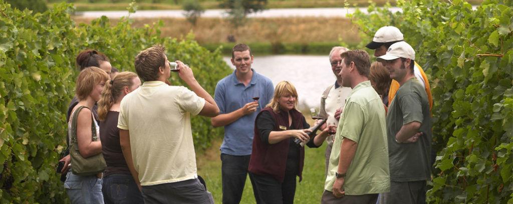 Best Long Island Vineyards to Visit