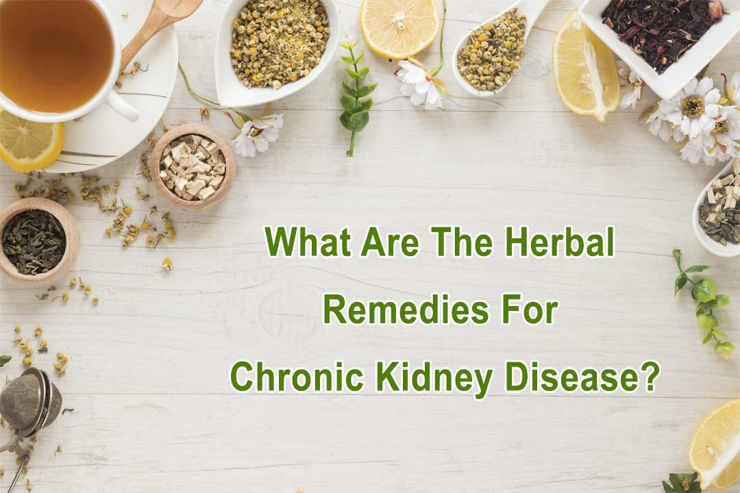 What Are The Herbal Remedies For Chronic Kidney Disease?