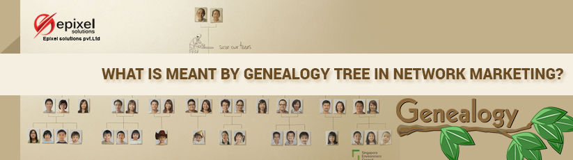 genealogy tree network marketing