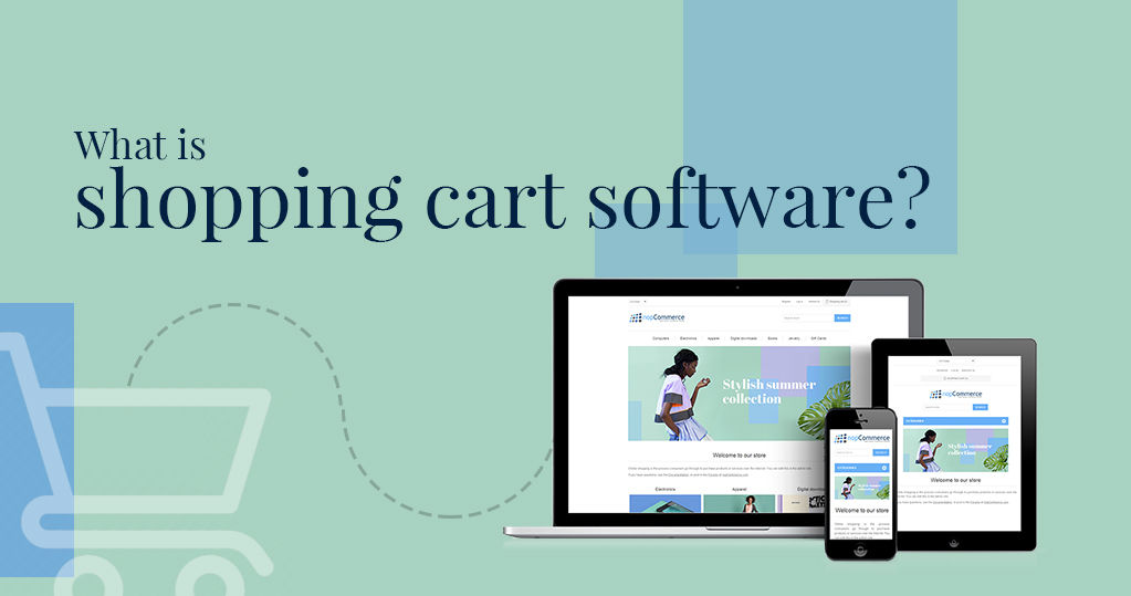What is the Shopping Cart Software ?
