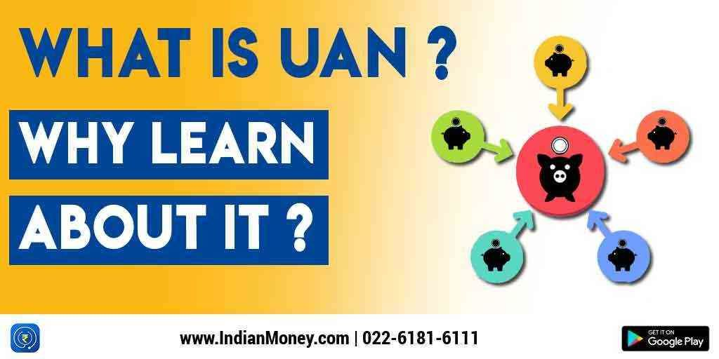 IndianMoney | What Is UAN? Why Learn About It?