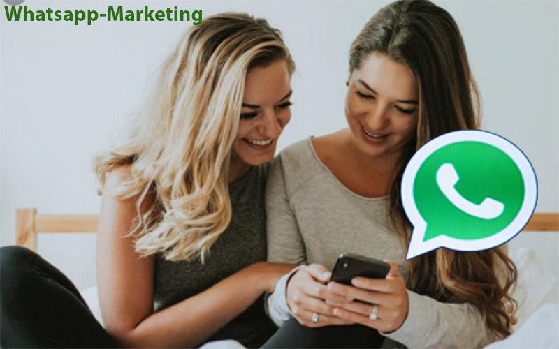 Whatsapp Marketing Messenger Software | Whatsapp Marketing Software