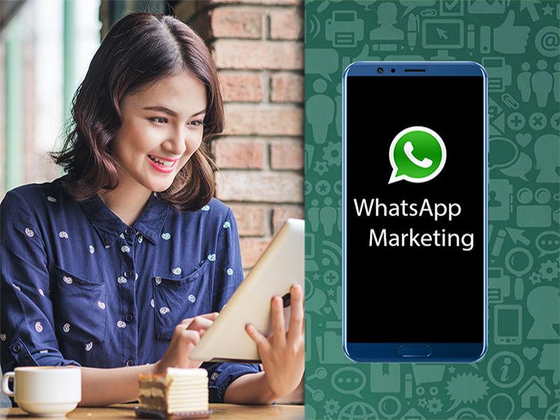 WhatsApp messenger App | Bulk WhatsApp marketing messenger software