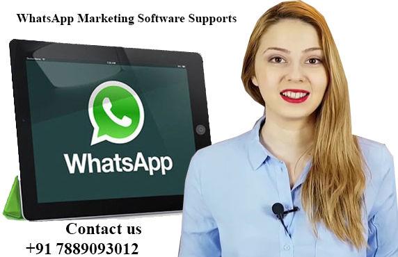 Bulk WhatsApp Marketing Software | WhatsApp Marketing Software Supports