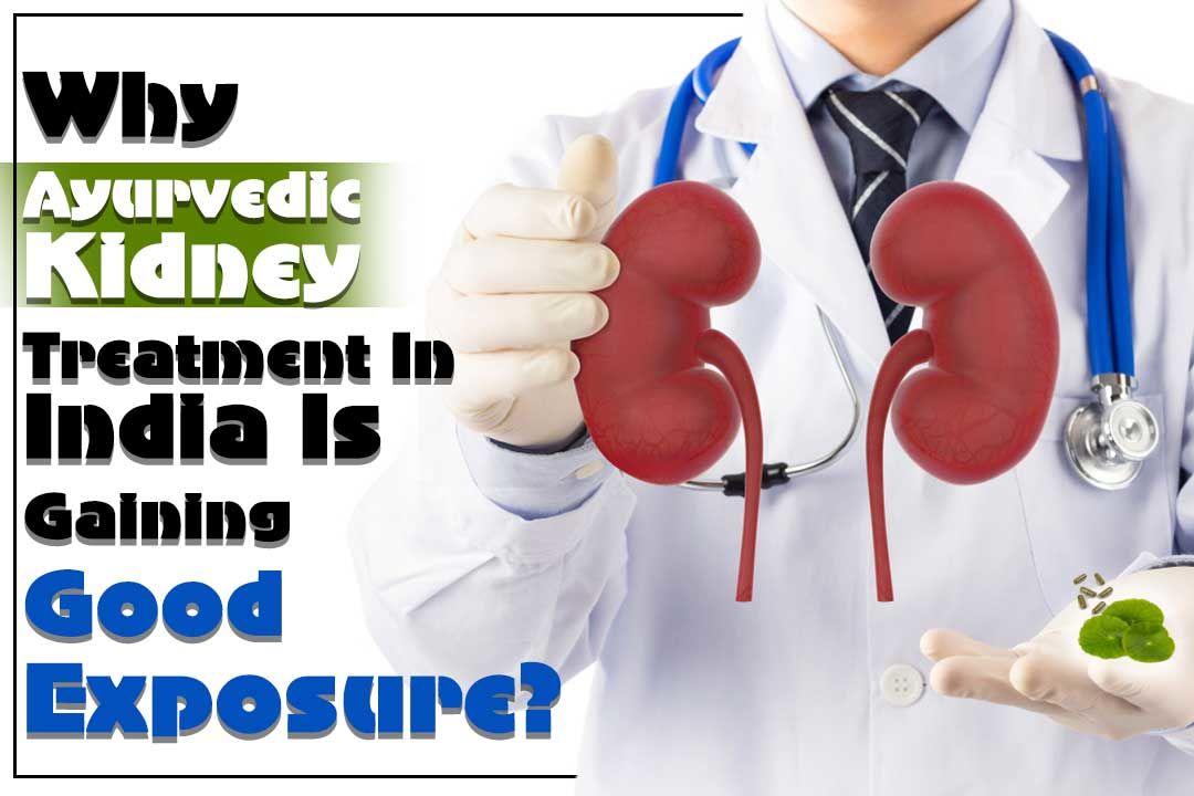 Why Ayurvedic Kidney Treatment In India Is Gaining Good Exposure?
