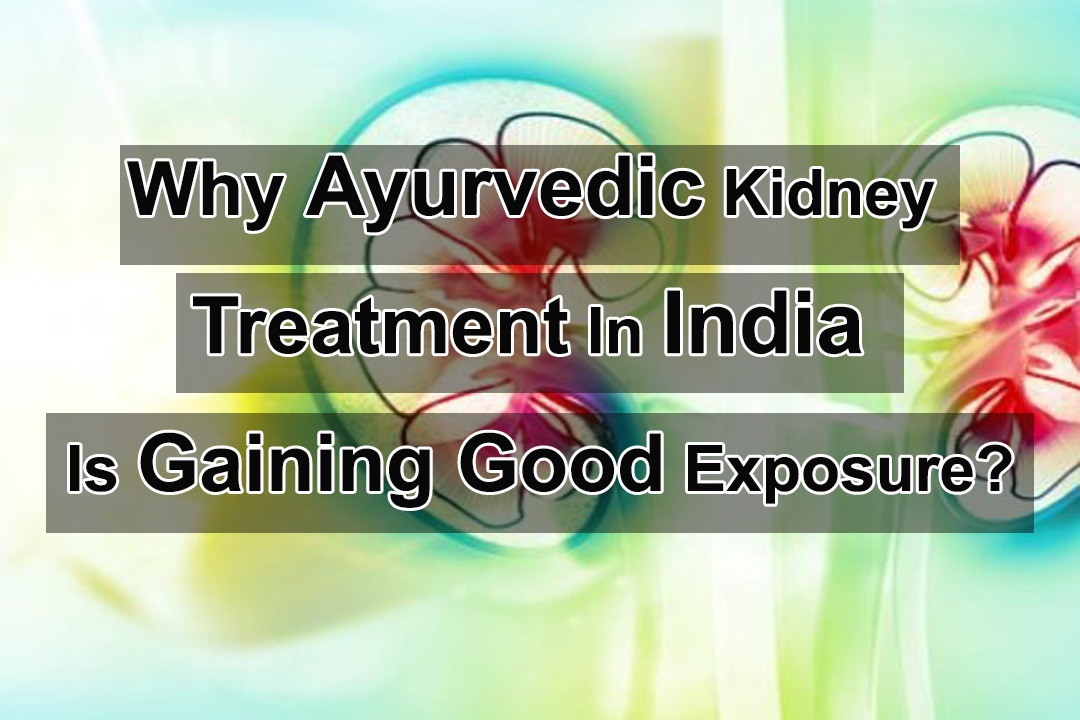 Why Ayurvedic Kidney Treatment In India Is Gaining Good Exposure?