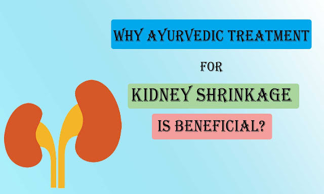 Why Ayurvedic Treatment For Kidney Shrinkage Is Beneficial?
