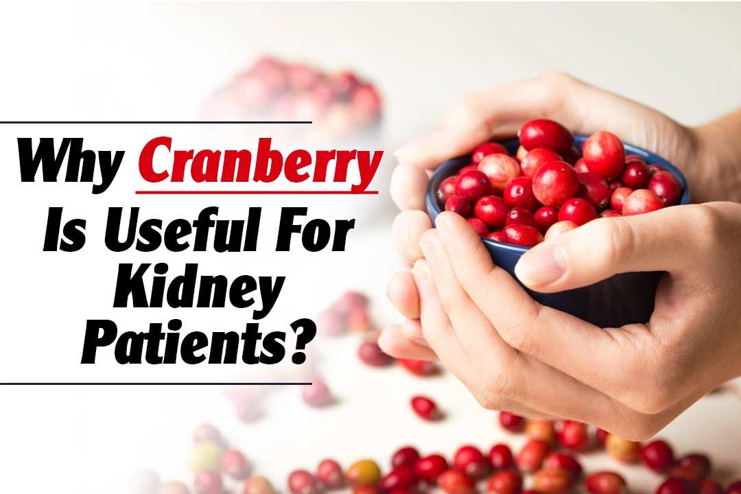 Why Cranberry Is Useful For Kidney Patients?