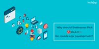 Why Should Businesses Pick AngularJs For Mobile App Development?