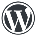 Leading Wordpress Website Development & Designing Maintenance Services