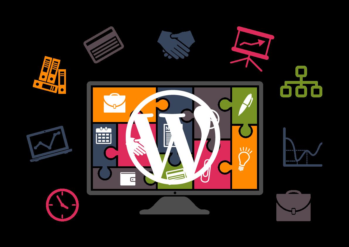 Hire the Best Wordpress Developer | Hire Wordpress Expert