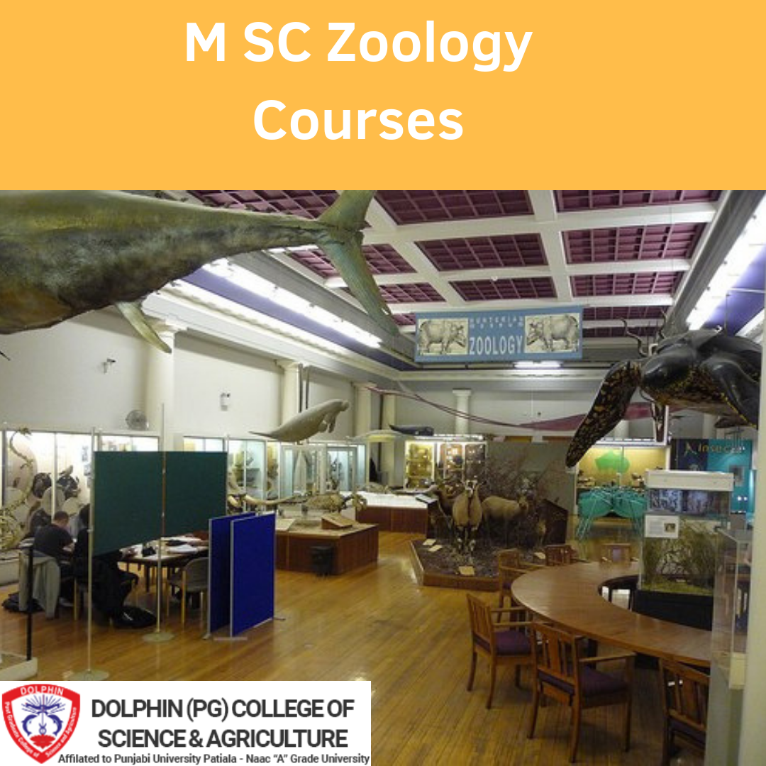 M.SC Zoology Courses | Dolphin(PG) College