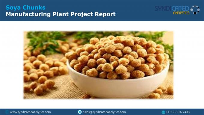 Soya Chunks Production Cost Analysis Report