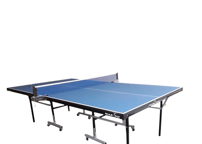 Why Would You Choose an Indian Table Tennis Table?