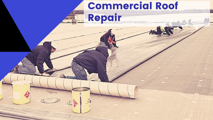 Roofing Services — Commercial Roof Maintenance Service/ This is How...