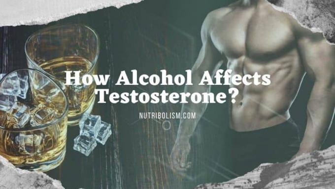 Drinking Alcohol Can Hamper Testosterone Level | Find Out More!