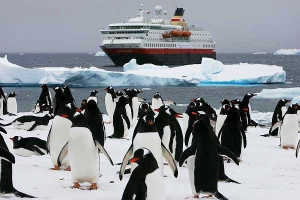 The Best Advice You Could Ever Get About luxury antarctica