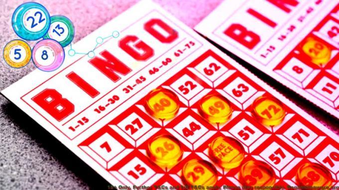 Is Online Bingo Games In Fact Considered Gambling?