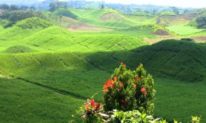 Bukit Teletubbies, wisata alam di Blitar yang lagi hits dan instagramable
