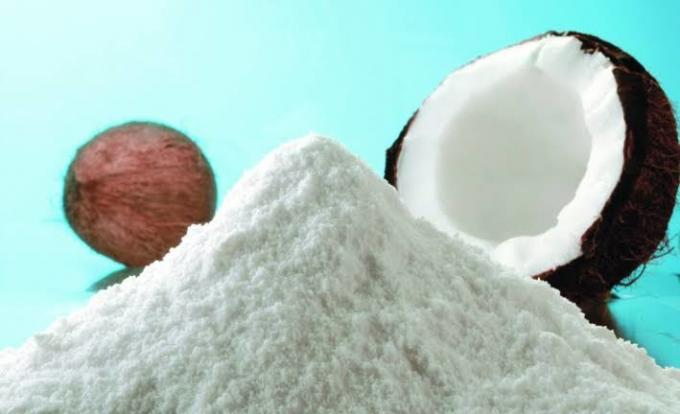 Buy Coconut Powder Online in UK location