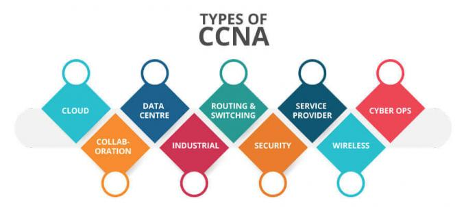 CCNA Training in Bangalore | Best Networking course in Bangalore | TIB