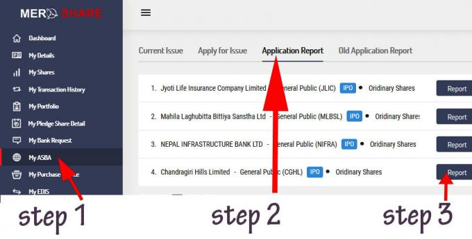 IPO Result - Learn How to Check IPO Allotment Status Online in Nepal