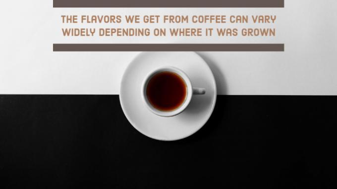 Your Guide to Coffee Around the World - CoffeeLand Alaska