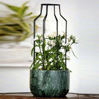Outdoor Planters: Buy Outdoor Plants & Pots Online at best prices