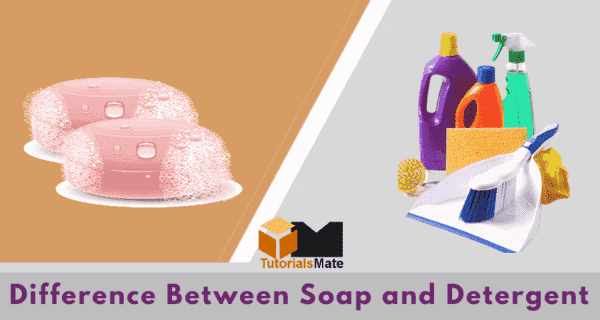 Difference Between Soap and Detergent - TutorialsMate