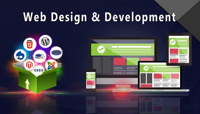 Web Development Company in Delhi, Electronics & Software Training
