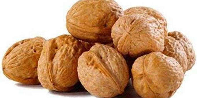 Buy Wholesale Walnuts Online in UK