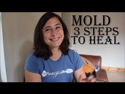 The Ultimate Cheat Sheet on mold inspection