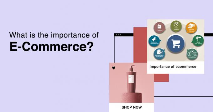 What is the Importance of Ecommerce? - Complete Expert Guide